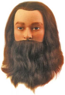 Голова учебная мужская с бородой Sibel LEIF 25см: фото